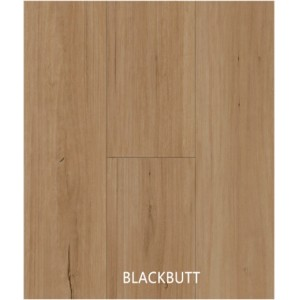 Hybrid Blackbutt